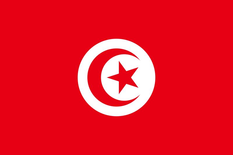 Tunisie : Diplômés, étudiants et enseignants au coeur de la Révolution du Jasmin