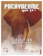 Dijon : une exposition pédagogique sur les éléphants