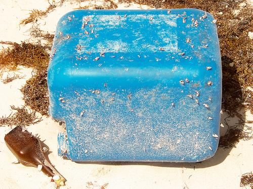 Alerte à la pollution des mers, suffoquées de plastiques