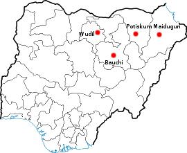 Nigeria : massacre dans un collège, au moins 40 morts