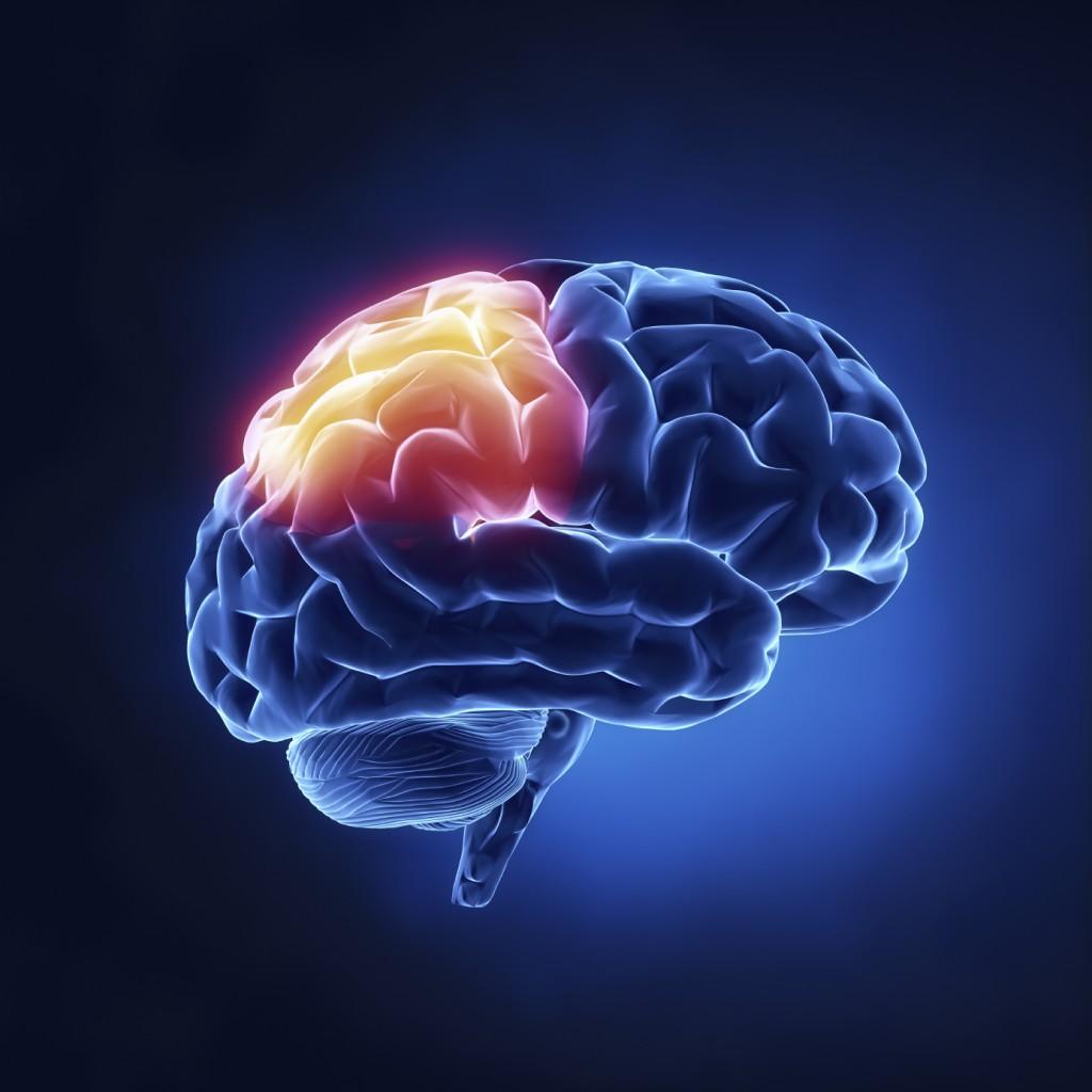 Jouer à des jeux vidéo régulièrement développe le volume du cerveau