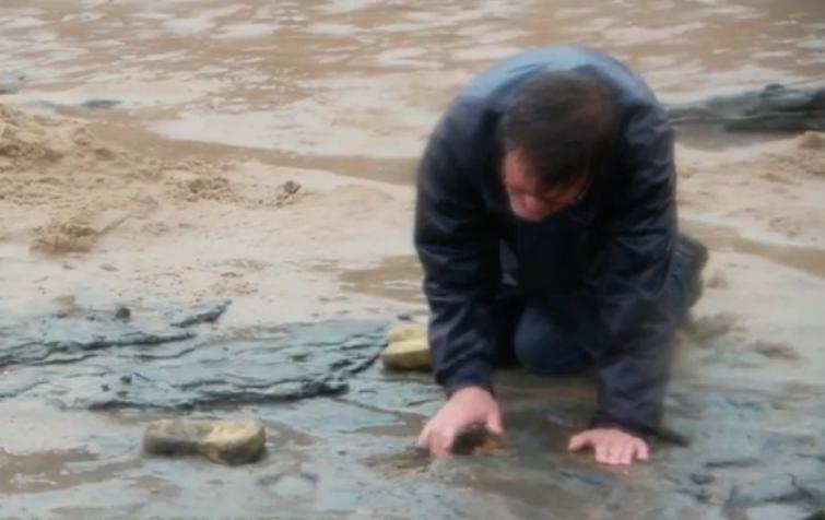 Des empreintes humaines vieilles de près d'un million d'années découvertes en Angleterre