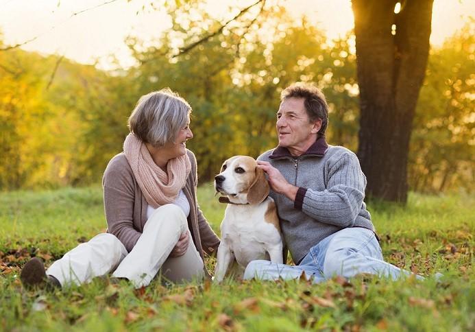 Pour paraître plus jeune, adoptez un chien