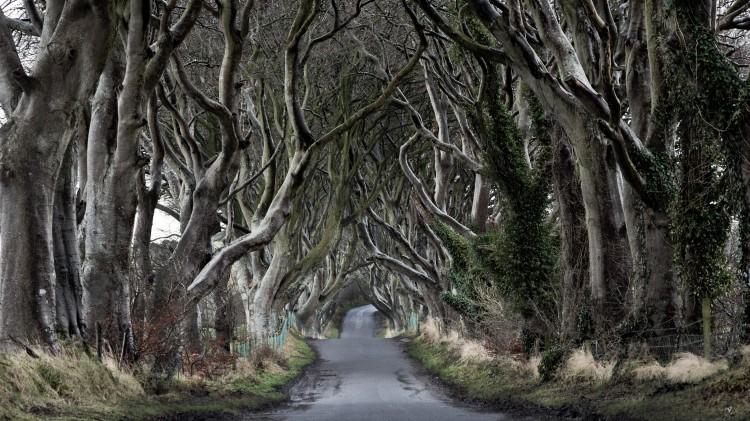 Etats-Unis : «Game of Thrones» étudié à l'université