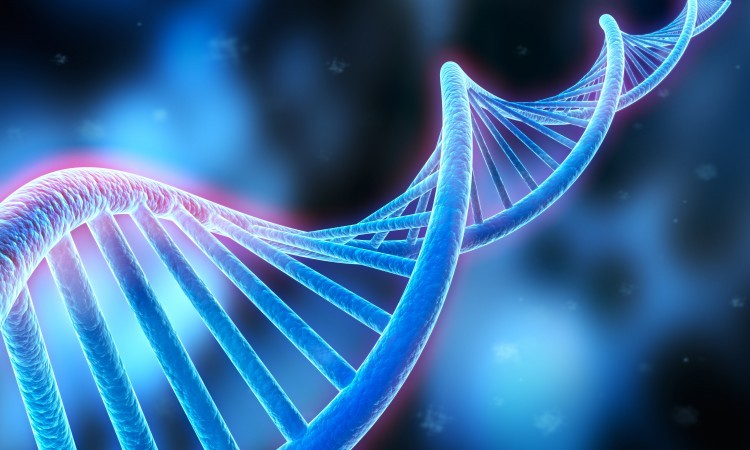 Google se lance dans la génétique et cherche 175 cobayes