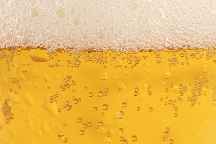 Le houblon utilisé pour la bière booste les capacités cognitives