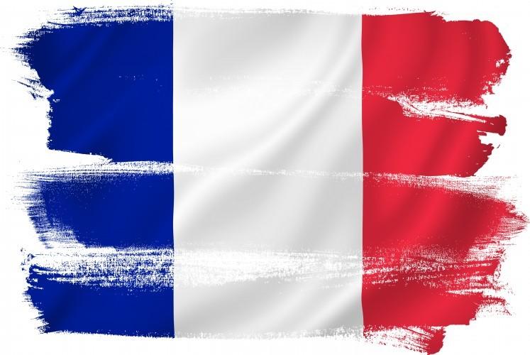 Fonction publique : «Sarkozy s'attaque à l'Etat pour le détruire et non pour le réformer»