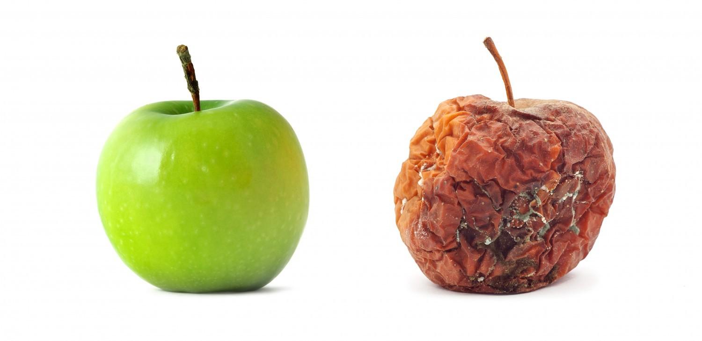 Etats-Unis : des profs comparés à des «pommes pourries» par le Time