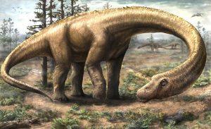_Dinosaure_Titanosaure_Dreadnoughtus_schrani © Jennifer Hall
