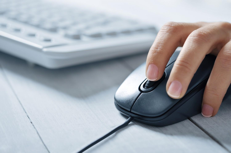 Consultation sur le socle commun : le ministère met en ligne les résultats !