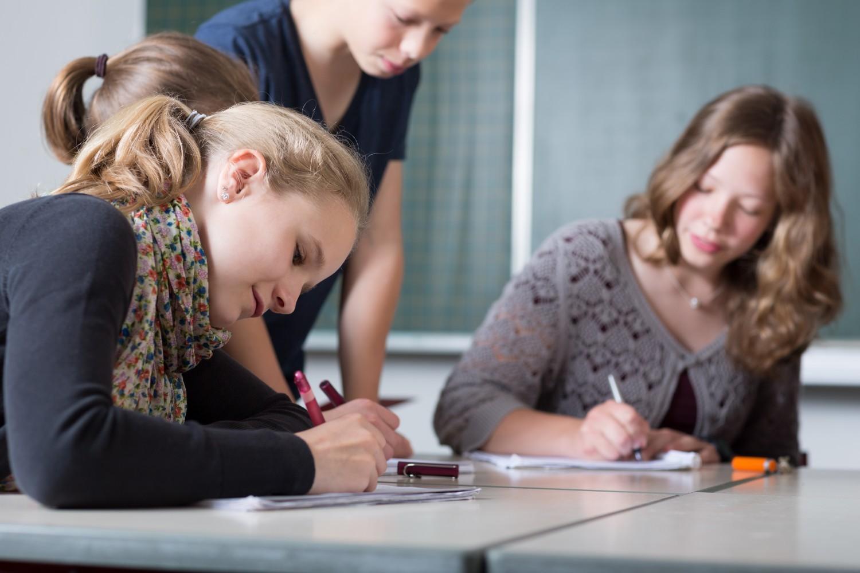 Education civique et morale : le CSP adopte un projet au lycée