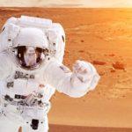 Fleur, salade, pomme de terre : la NASA cultive tout dans l'espace !