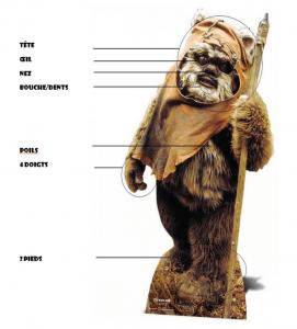 En SVT, les 3e Star Wars ont étudié la classification des espèces avec Star Wars.