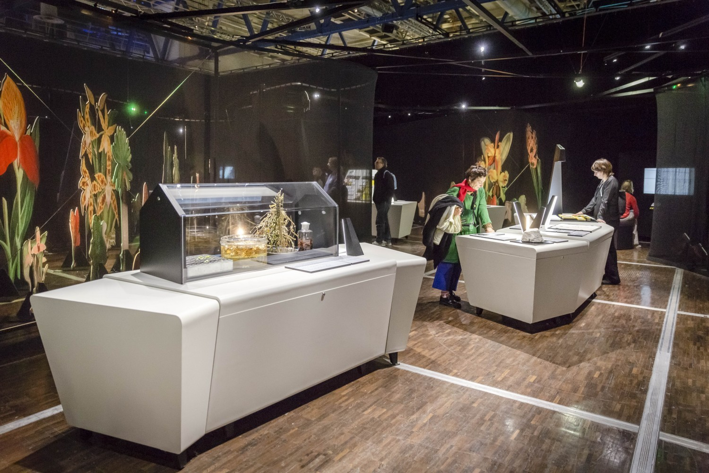 Cité des sciences : une exposition temporaire pour tout savoir sur Darwin