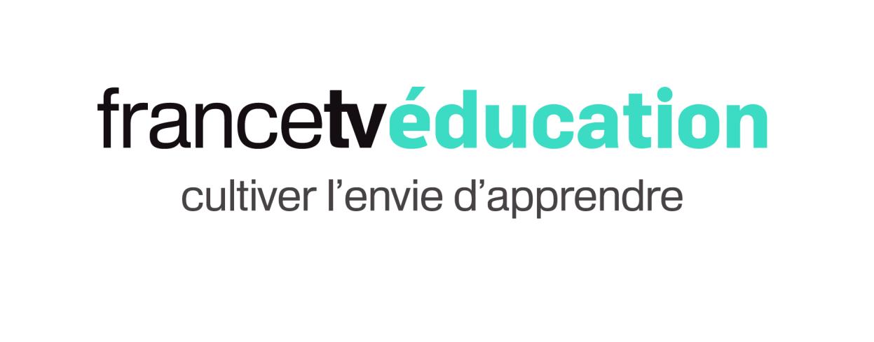 Brevet et Bac 2016 : France TV éducation met en ligne des dossiers «Spécial révision»