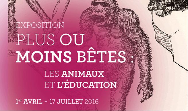 Musée de l'Education : nouvelle expo «les animaux et l'éducation»