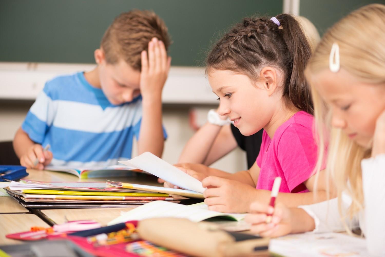 Maîtrise de la langue : une réduction des écarts à l'école (Depp)