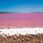 Lacs roses : beautés naturelles… ou non