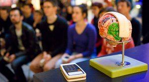 """Quizz """"Idées reçues sur le cerveau"""" / Cité des Sciences et de l'Industrie"""