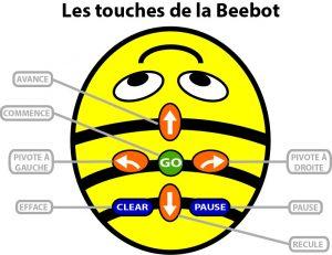Les touches de Bee-Bot