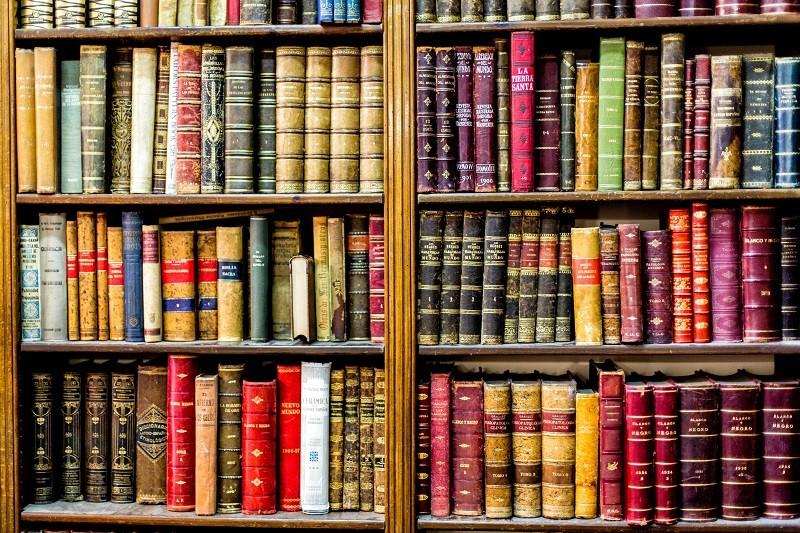 Grands romans classiques à lire et à télécharger gratuitement