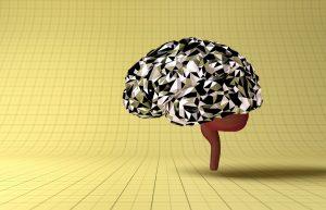 Cerveau humain concept capacité intellectuelle © francis bonami