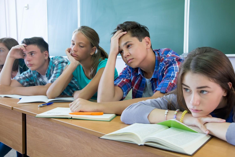 Liaison école-collège : faut-il créer des «classes mixtes» CM2 – 6ème ?