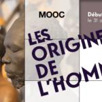 Les origines de l'homme : le MOOC pédagogique du Musée de l'Homme
