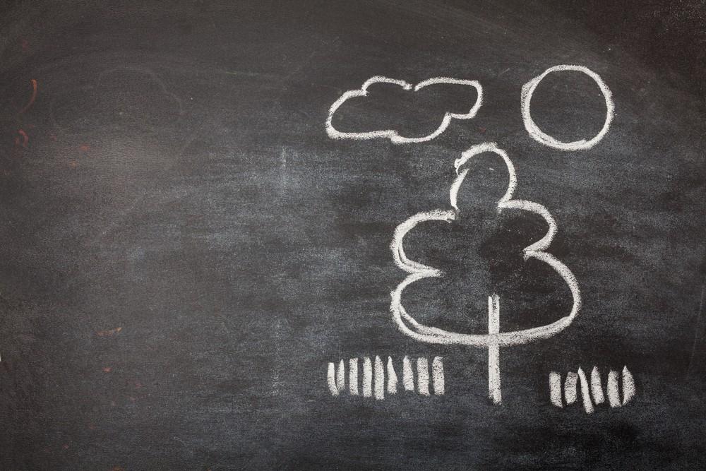 Lancement d'un concours de projets scolaires sur l'environnement et le climat