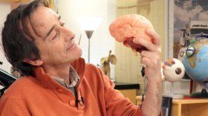 """""""Le cerveau, une machine hyperconnectée"""", un dossier de l'Esprit Sorcier."""