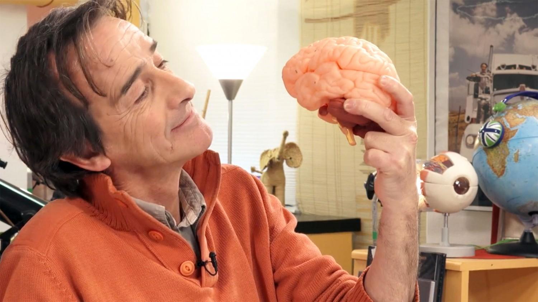 Explorez le cerveau avec l'Esprit Sorcier