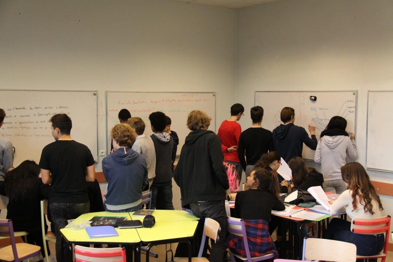 Classe mutuelle : les élèves s'expliquent très bien les choses entre eux, parfois mieux que nous