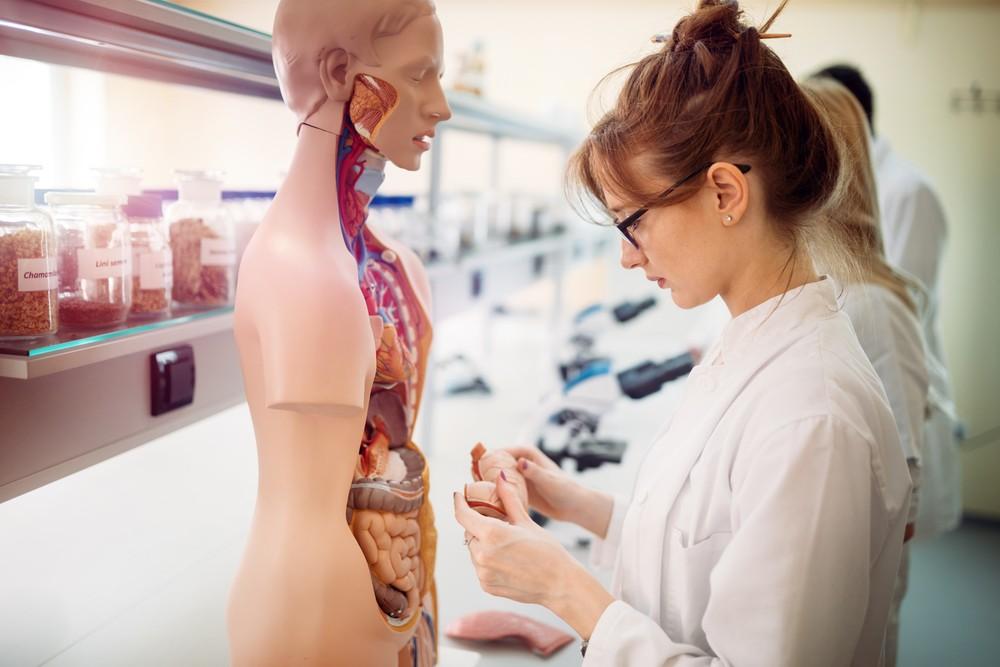 La réforme du lycée inquiète l'Académie de Médecine