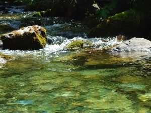 Une rivière alpine / Pixabay / LalouBLue / Licence CC
