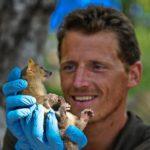 Pariscience : quand un documentaire contribue à la préservation d'un massif méconnu de Madagascar