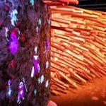 Exposition Microbiote : découvrez le petit monde qui se cache dans vos intestins