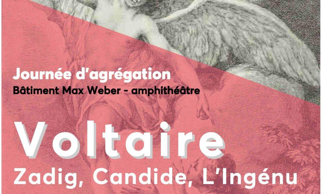 Une journée Voltaire le 10 janvier à l'université de Nanterre