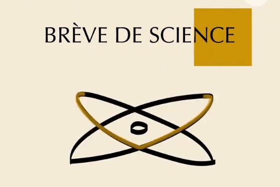 La web-série «Brève de science» est de retour !
