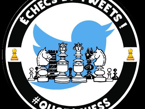 Quotichess permet de «développer des compétences scolaires autour des échecs»