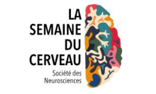 La Semaine du Cerveau démarre le 15 mars !